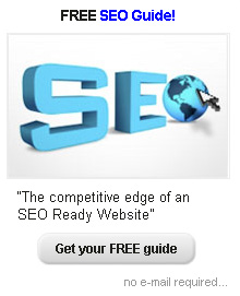 FREE SEO Guide! The competitive edge of an SEO Ready Website
